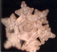 water cluster image1